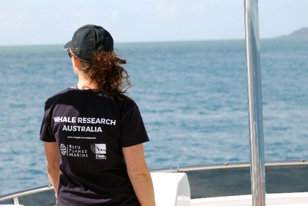 Le programme de recherches sur les baleines et les dauphins de la Grande Barrière de corail (Great Barrier Reef Whale and Dolphin Research Programme) donne l'opportunité de travailler aux côtés de scientifiques de renommée mondiale, de la mi-juillet à la mi-septembre, dans le cadre d'une étude sur les baleines à bosse au large de l'Australie.