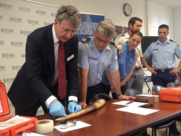 David Cowdrey, responsable des campagnes IFAW au Royaume-Uni, lors de sa démonstration de relevé d'empreintes sur une défense d'ivoire saisie.