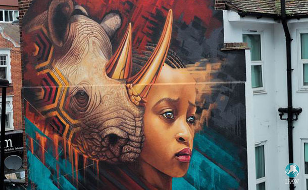 Rhino mural by street artist Sonny in Croydon, London in collaboration with IFAW