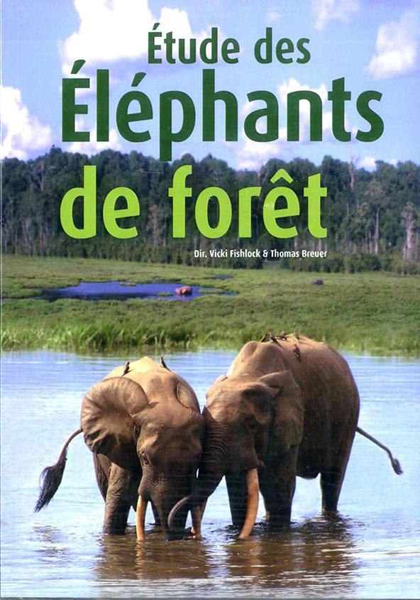 Étude des éléphants de forêt représente plus de 7 ans de travail et la contribution de plus de 20 chercheurs.
