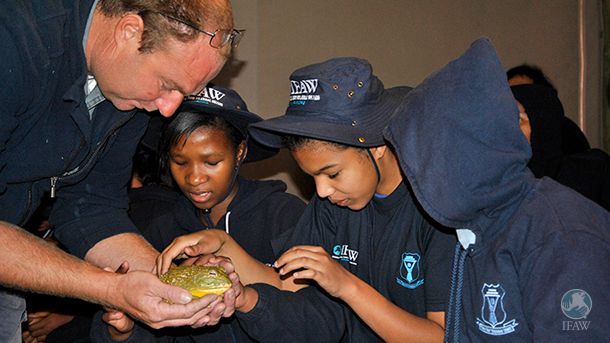 •Learners from Cape Town's Athlone School for the Blind meet a giant bullfrog