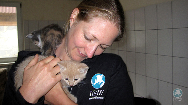 Kate Atema, IFAW's Program Director of Community Animals, with a kitten at a Moscow municipal animal shelter.
