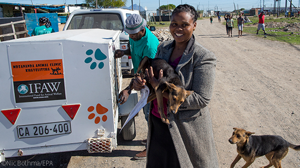 mobile animal clinic drives through the townships of south africa