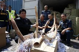 Malaysian authorities with part of the recent 15 tonne seizure. Source: Wildlife Extra