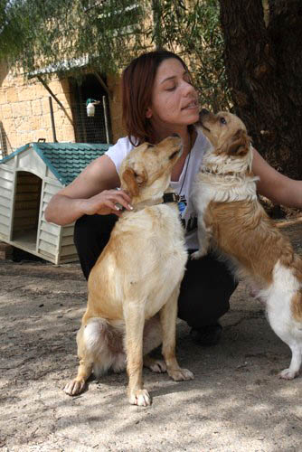 Dogs at the Nicosia Dog Shelter were happy to receive much needed food.