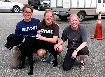 IFAW responder Denise Bash reuniting Beck, an adult black lab with his family. A family friend had posted a lost dog online ad that Denise saw and resulted in a happy reunion.