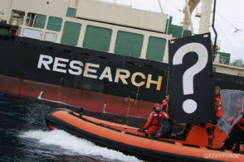 "The detail with which Australia has revealed the commercial nature of Japan's whaling, and its failure to meet modern scientific standards or produce any science of value, means any last pretense about the ""scientific"" nature of Japan's whaling has disappeared. Photo Credit: Greenpeace International"