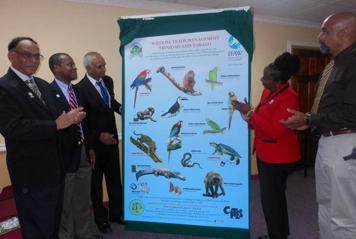 Acting permanent secretary in the Ministry of Housing and Environment, Mrs. Joy Creese, second from right, views a poster on the awareness campaign on wildlife management which was launched on Monday. Also viewing the poster from left are acting deputy permanent secretary Anthony Ramnarine, chairman of the overview committee, wildlife trade programme director Kelvin Alie, acting Conservator of Forests Seepersad Ramnarine and president of the Zoological Society Benjamin De La Rosa. PHOTO: NADRA NATHAI-GYAN