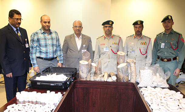 Officials from Dubai Airport security and the UAE Ministry of the Environment with confiscated ivory.