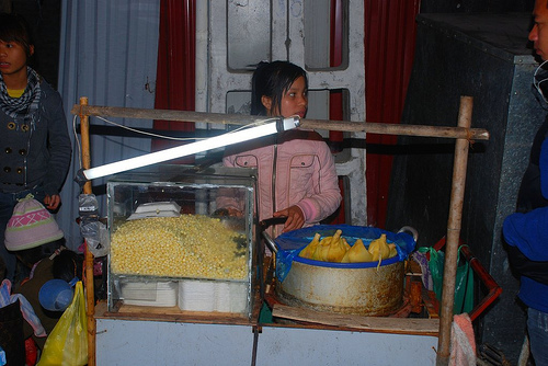 Vietnam: The Streetfood Vendor