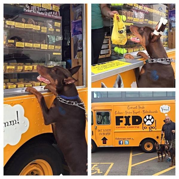 Chicago, IL: Check Out Fido to Go – It's a Food Truck for Dogs!