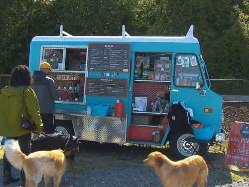 The Seattle Barkery food truck serves baked  goods for dogs. (Photo: Custom)