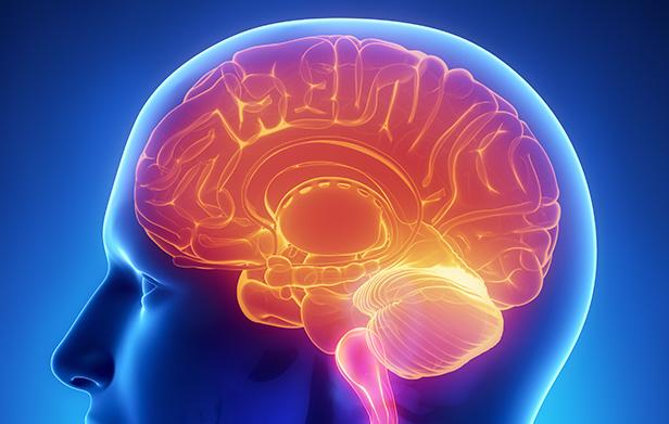 Como Usar a Neurolinguística nas Minhas Estratégias de Marketing?
