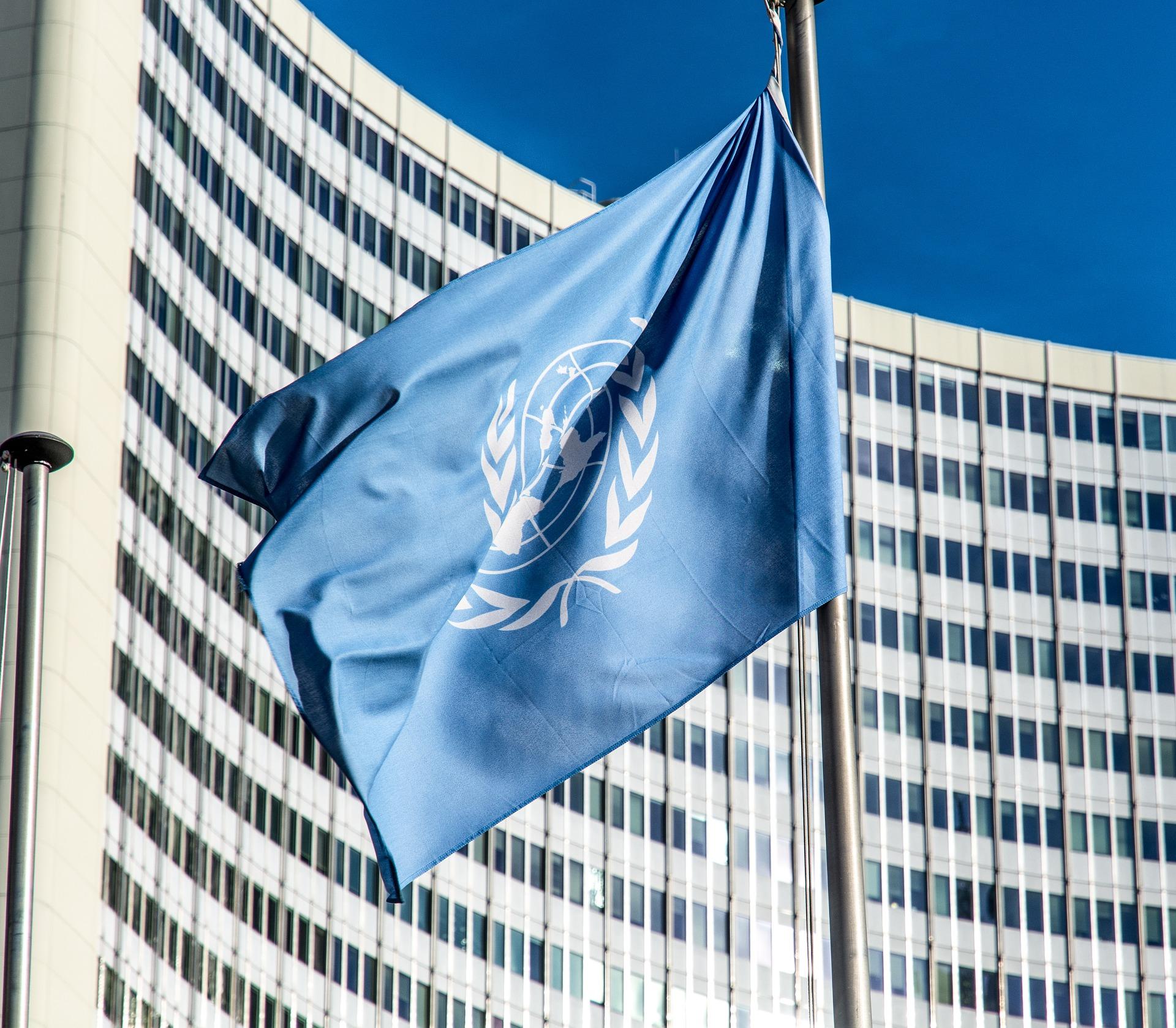 Conheça o Empretec da ONU