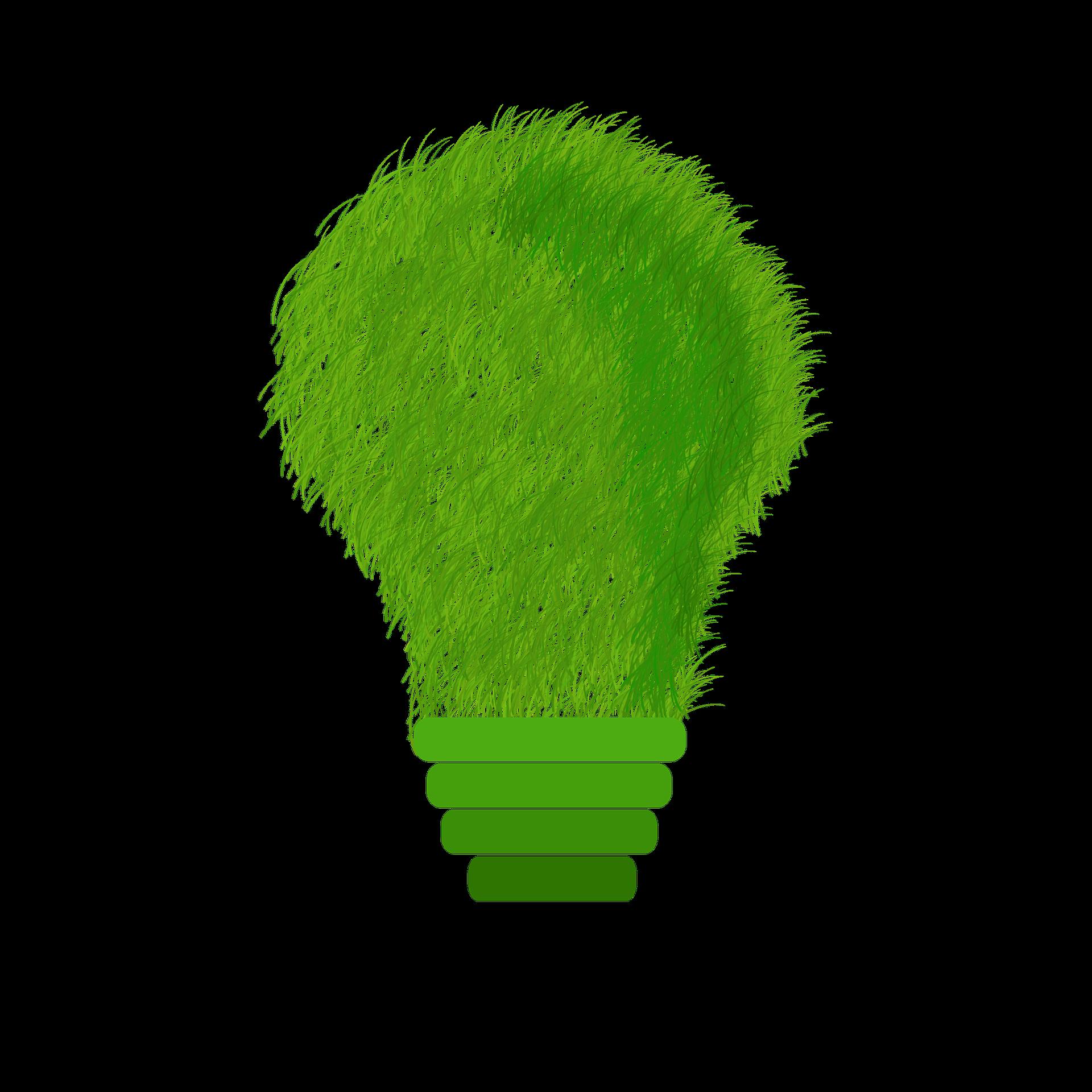 O Caminho das Empresas Sustentáveis em prol da Natureza