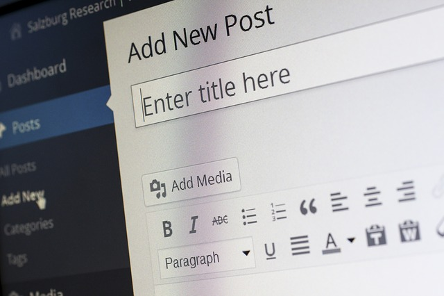 Saiba Como Ser Blogueira em 5 Passos