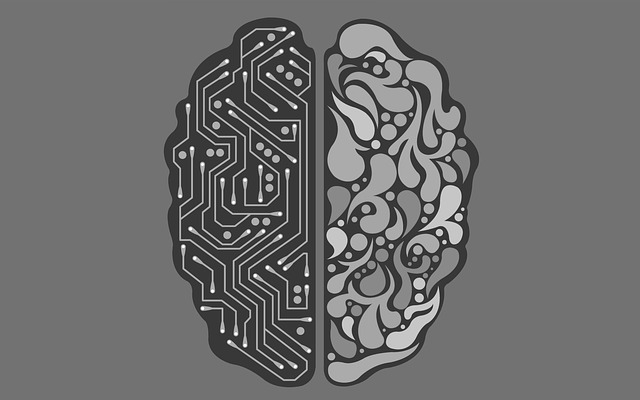 Entenda o que é Neuroplasticidade
