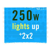 250 WATT GROW LIGHTS