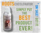 roots excelerator