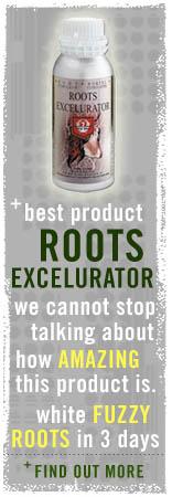 rootsexcelurator