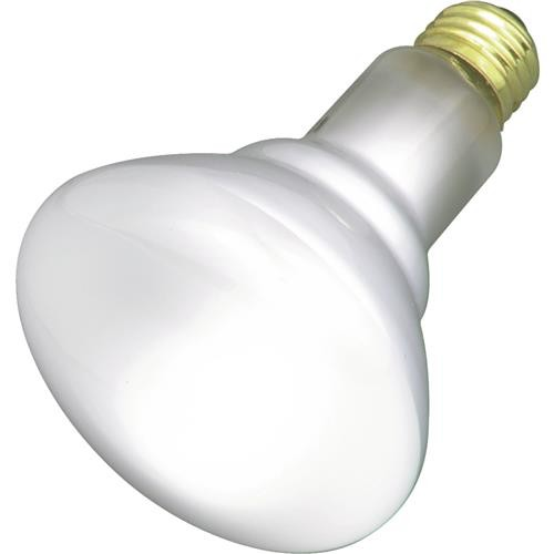 Westinghouse Lightng Westinghouse BR30 Commercial Service Floodlight Light Bulb