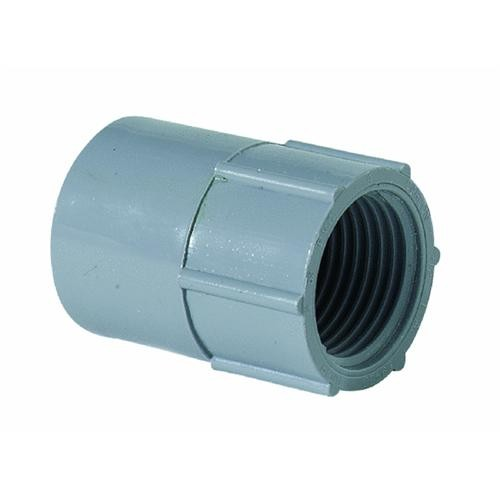 Thomas & Betts Female Adapter