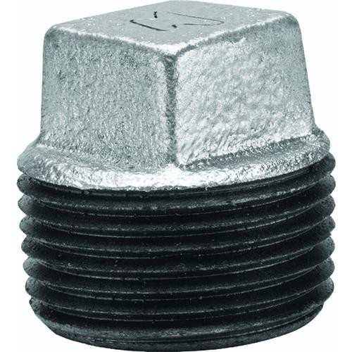 Anvil International Galvanized Square Head Pipe Plug