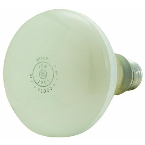 GE Lighting GE BR30 Floodlight Light Bulb