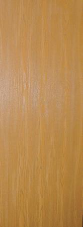 Masonite 30 in. x 80 in. Smooth Flush Primed Hollow Core Lauan Wood Composite Interior Door Slab