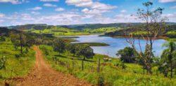Ecossistemas - lago