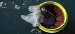 Cesta de lixo no mar
