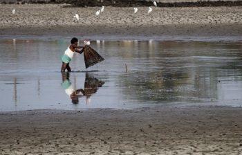 Pesca em ambiente seco