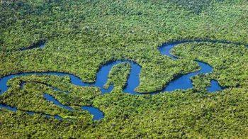 O amazonas