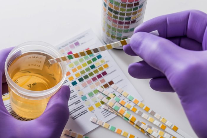 Sample Drug and Alcohol Testing Policy