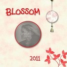 Blossom-001_medium