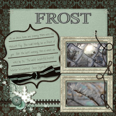 2010_december_frost_small