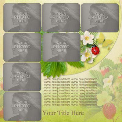 Multi_photo_template_vol_4-001