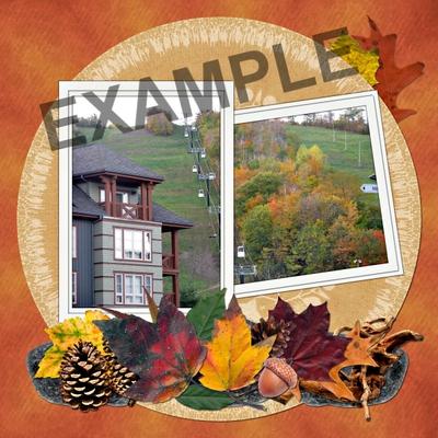 Autumn_cluster_sprays_-_02