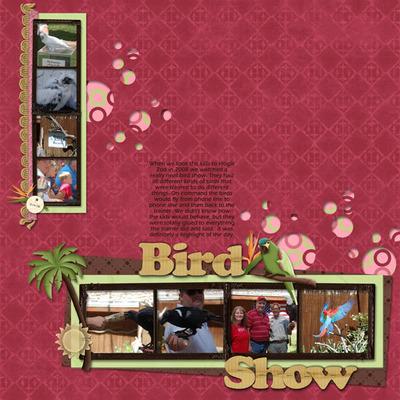 Bird-show-med
