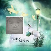Fly_template_1-001_medium