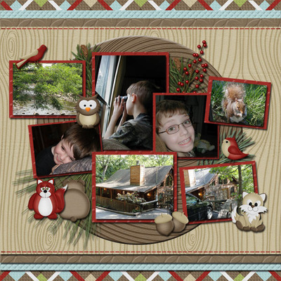 Lw_woodland_winter_lo1