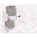 11x8_delicate-001_small