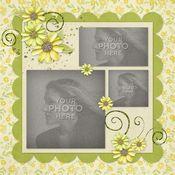 Daisy_chain_album-004_medium