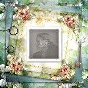 Silver_rose_photobook-001_medium