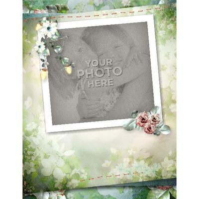 11x8_silver_rose_book-005