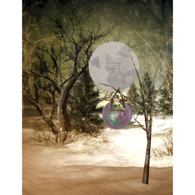 11x8_winter_night_t2-004