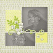 Lemon_lime_album-001_medium