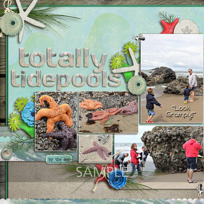 Totally-tidepools-left