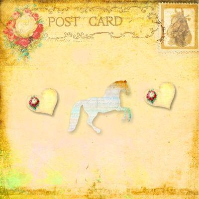 Horse_whisperer_photobook-022