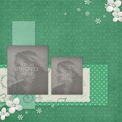 Mint_album-001_medium